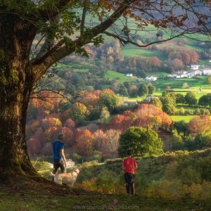 Tarde de otoño en Baztan