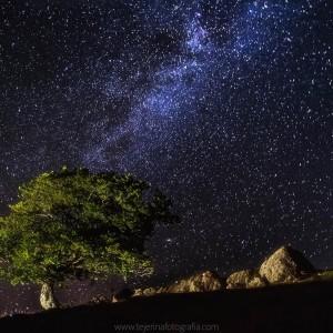 Noche de verano en Zaraitzu Salazar