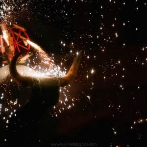 Zezenzusko Toro de fuego